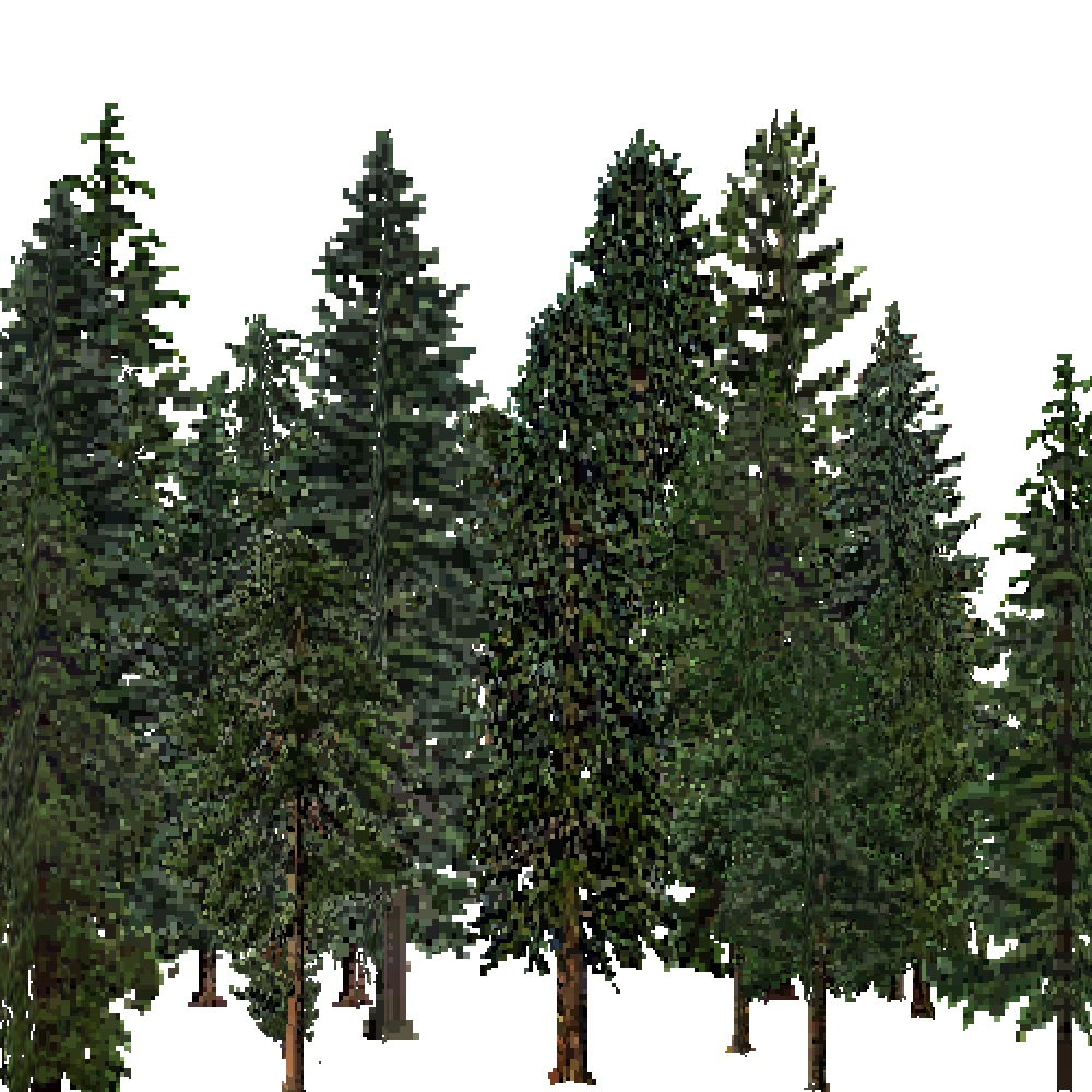 Screenshot of USA Forest, Pacific Lowland, Evergreen Dense