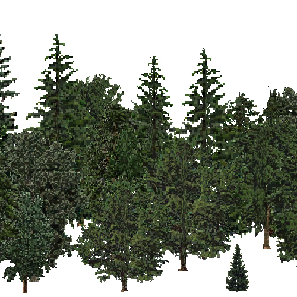 Screenshot of USA Forest, Pacific Lowland, Mixed Dense