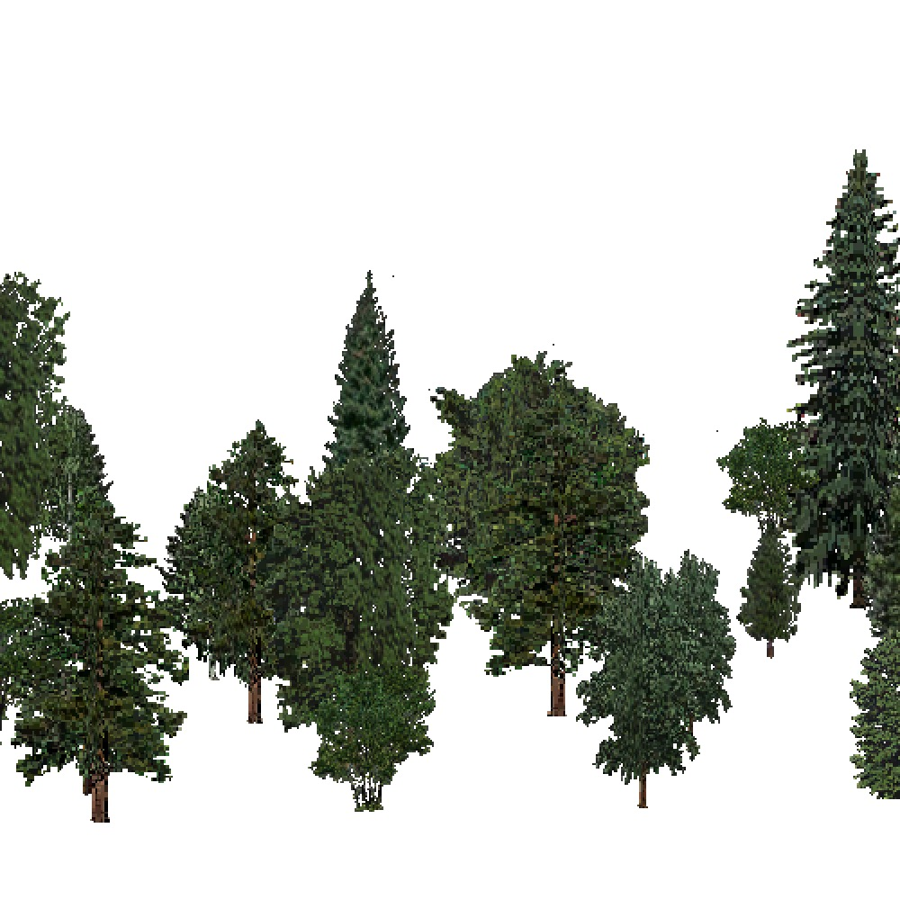 Screenshot of USA Forest, Pacific Lowland, Mixed Sparse
