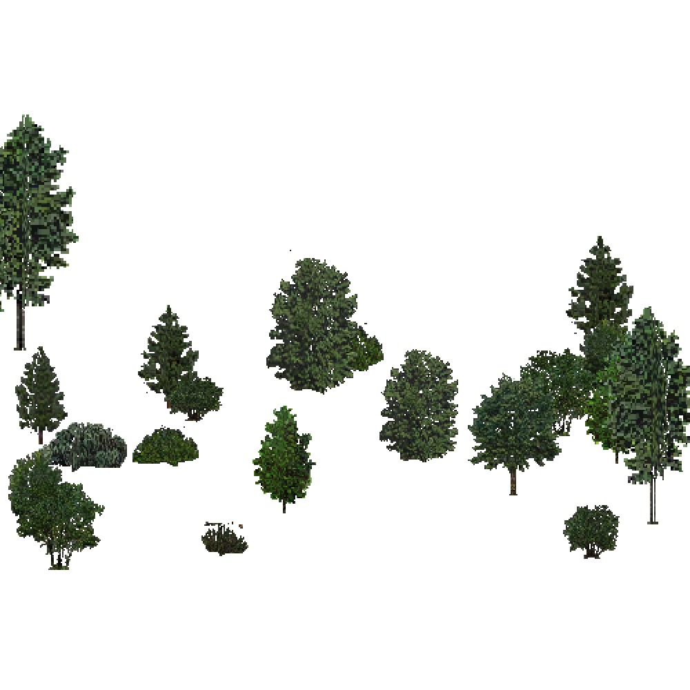 Screenshot of USA Forest, Pacific Lowland, Shrub