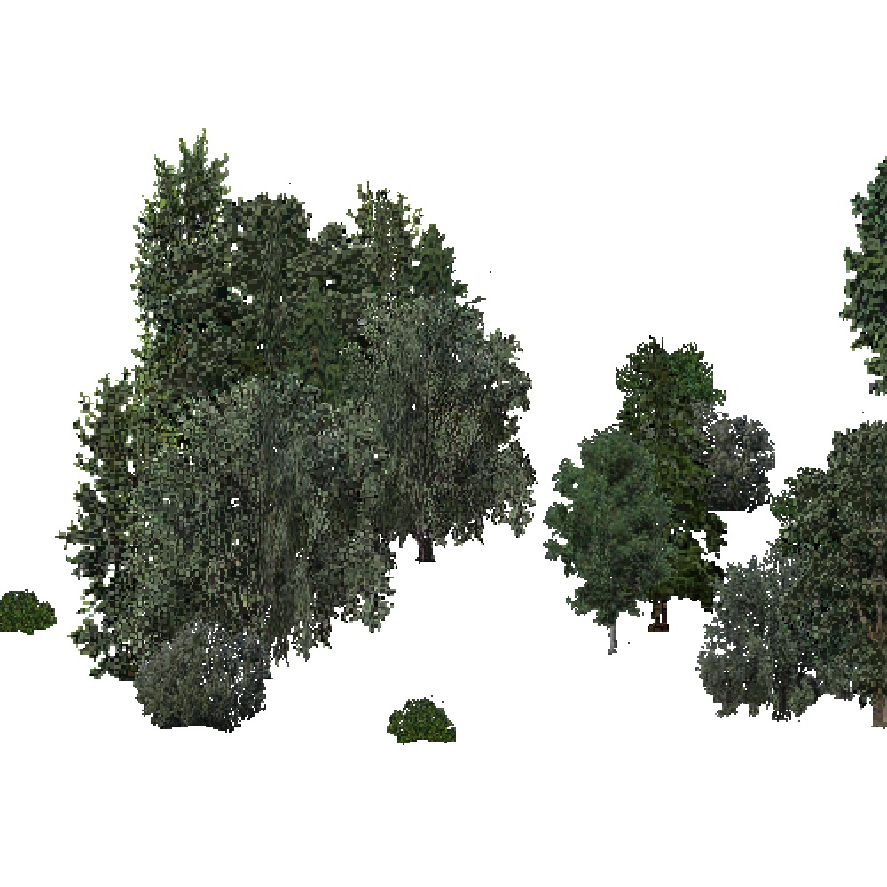 Screenshot of USA Forest, Pacific Lowland, Woodywetland