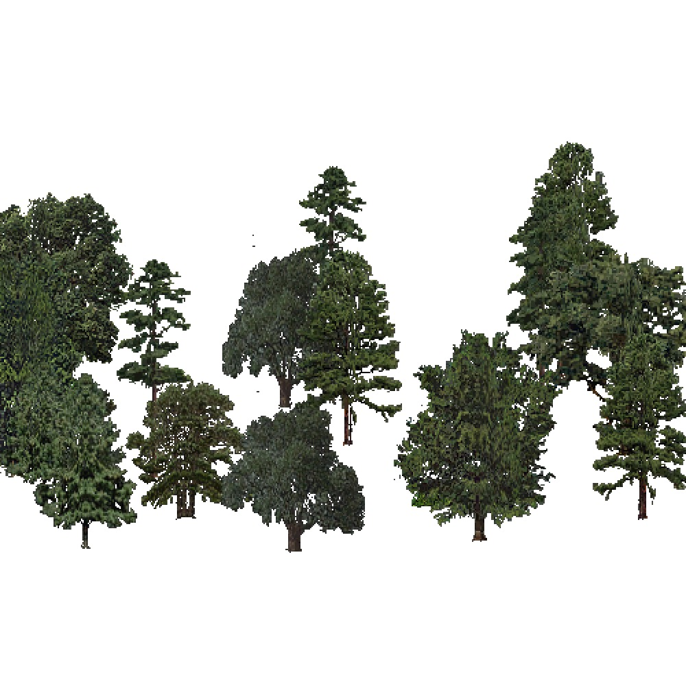 Screenshot of USA Forest, Prairie Parkland Subtropical, Mixed Sparse