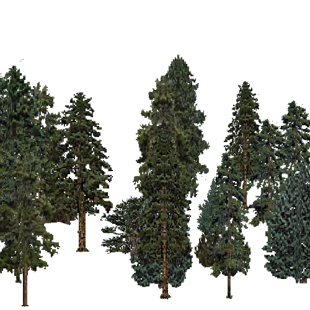 Screenshot of USA Forest, Prairie Parkland Temperate, Evergreen Dense