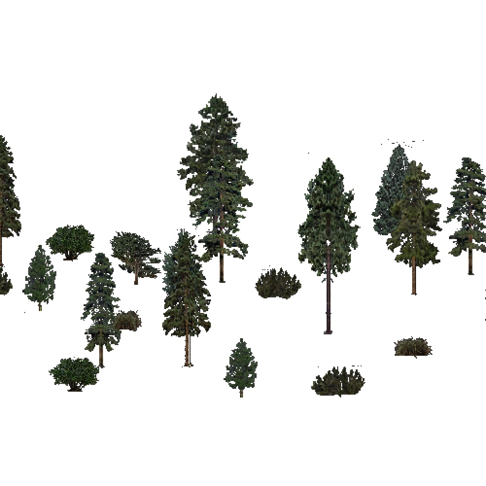 Screenshot of USA Forest, Prairie Parkland Temperate, Evergreen Sparse