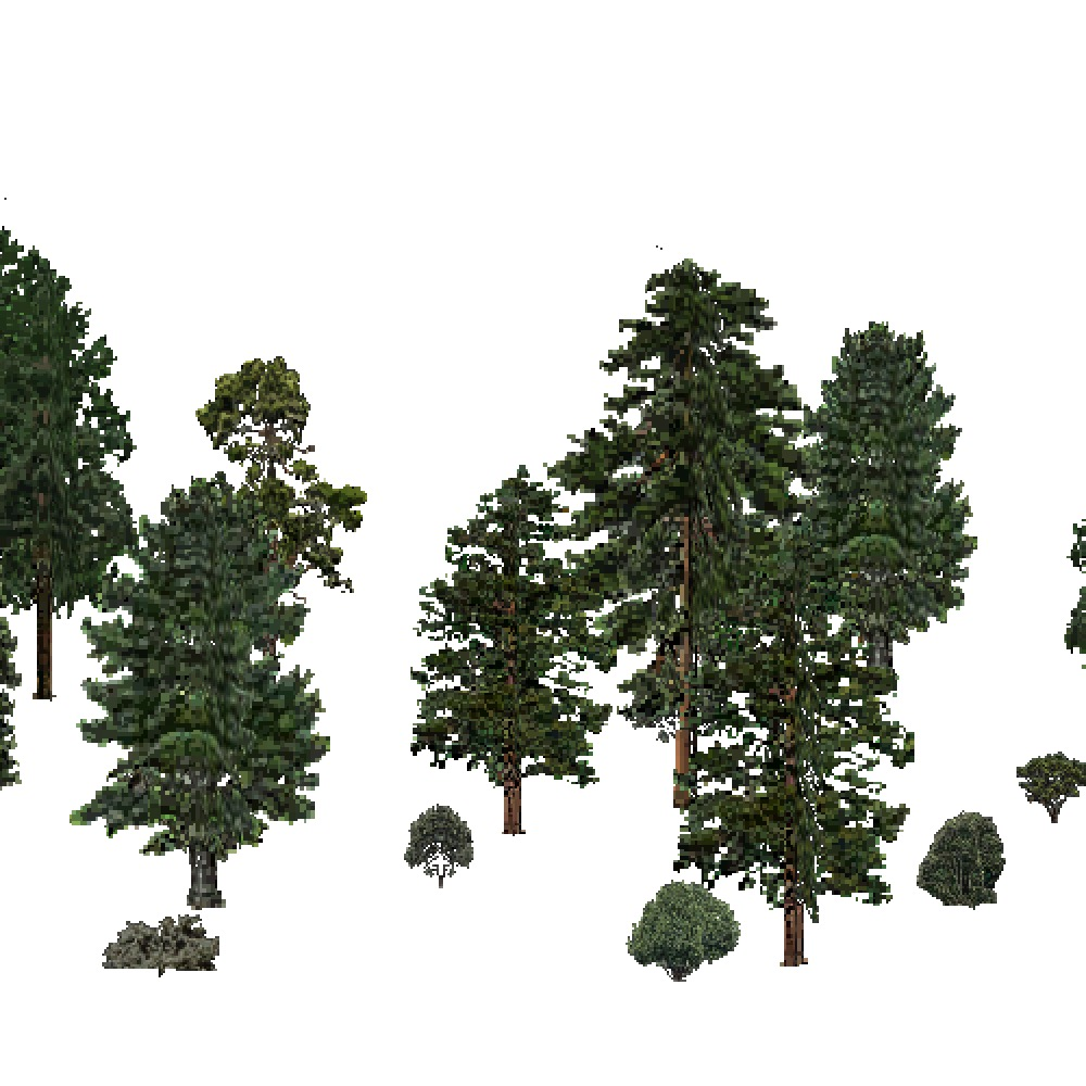 Screenshot of USA Forest, Sierran Steppe, Evergreen Sparse