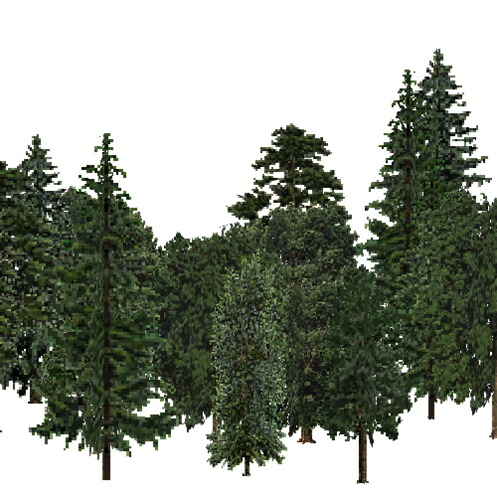 Screenshot of USA Forest, Sierran Steppe, Mixed Dense