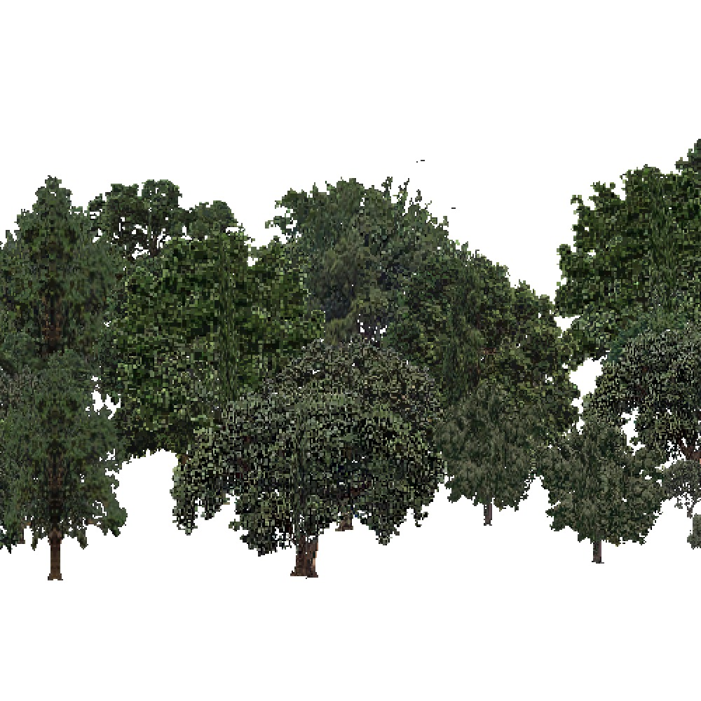 Screenshot of USA Forest, Sierran Steppe Sequoias, Deciduous Dense