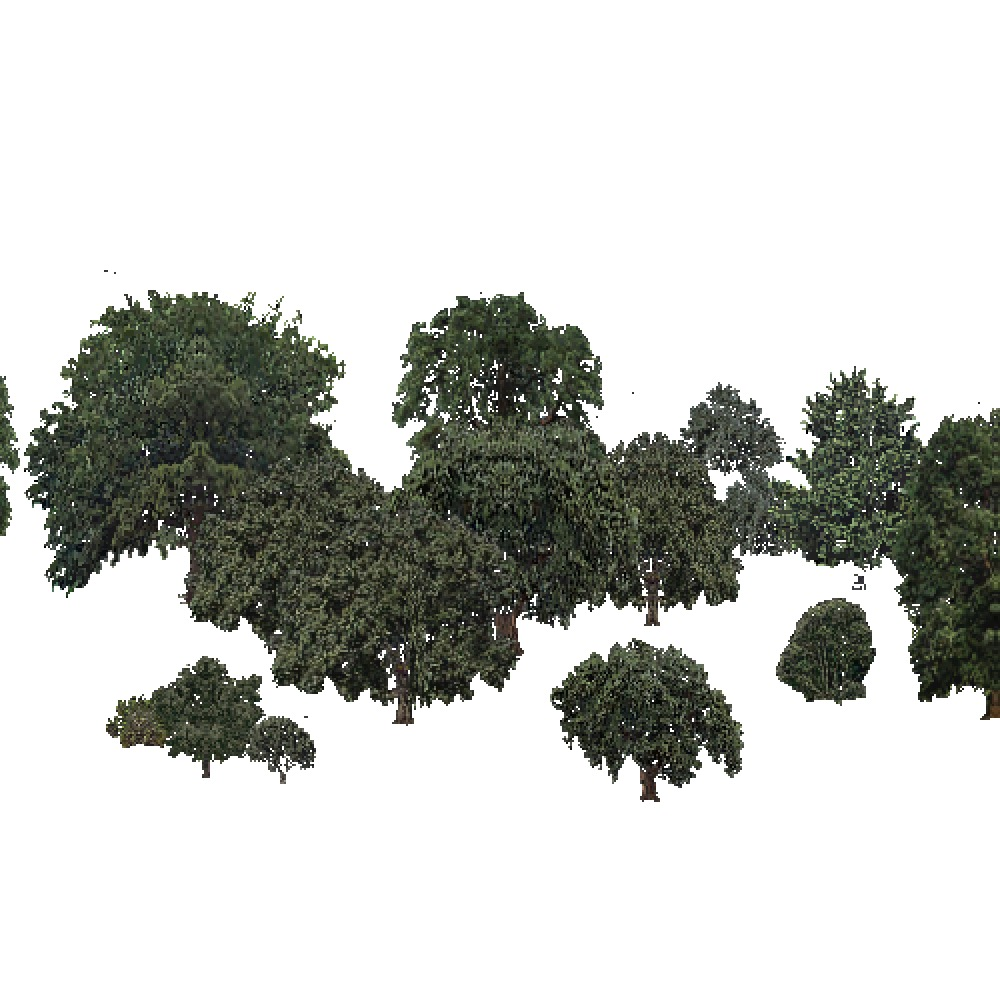 Screenshot of USA Forest, Sierran Steppe Sequoias, Deciduous Sparse