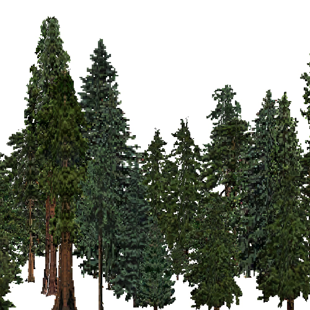 Screenshot of USA Forest, Sierran Steppe Sequoias, Evergreen Dense