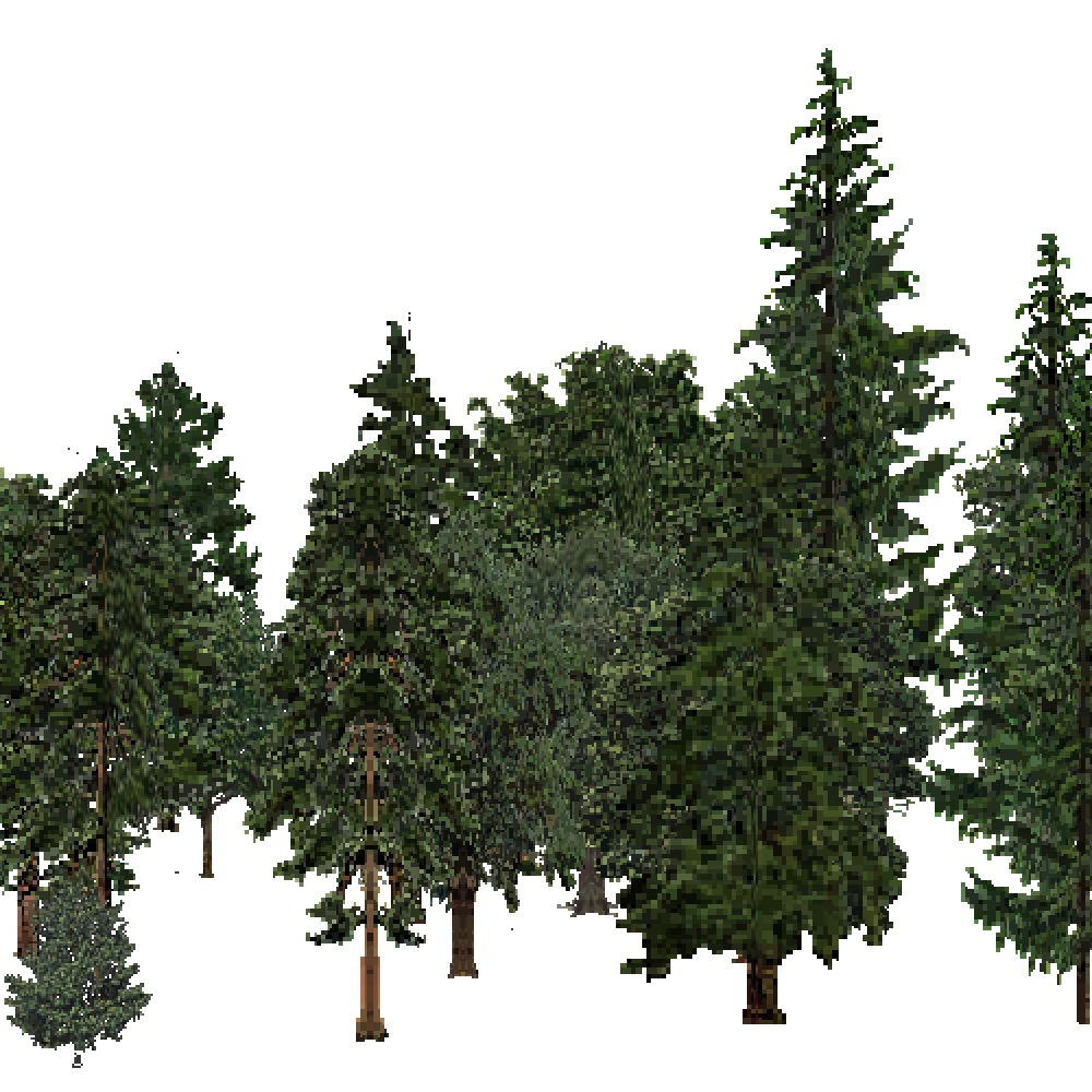 Screenshot of USA Forest, Sierran Steppe Sequoias, Mixed Dense