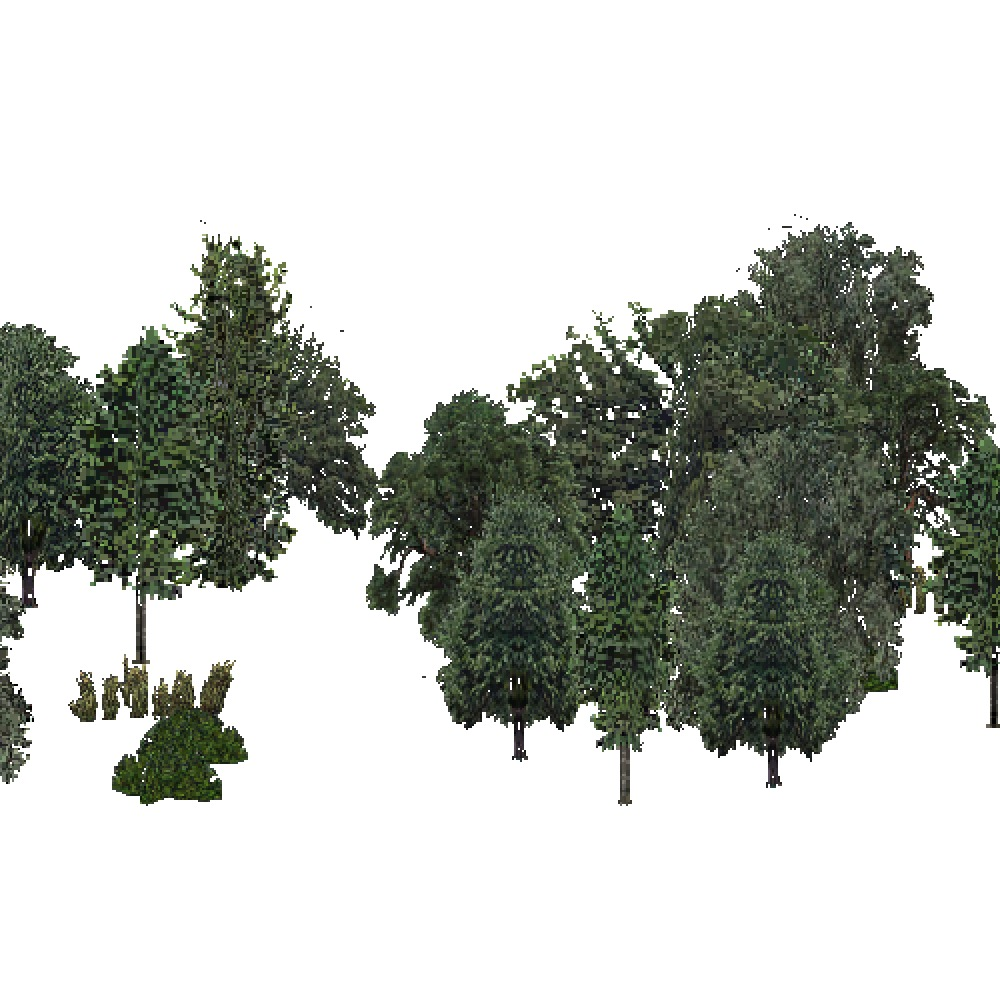 Screenshot of USA Forest, Sierran Steppe Sequoias, Woodywetland