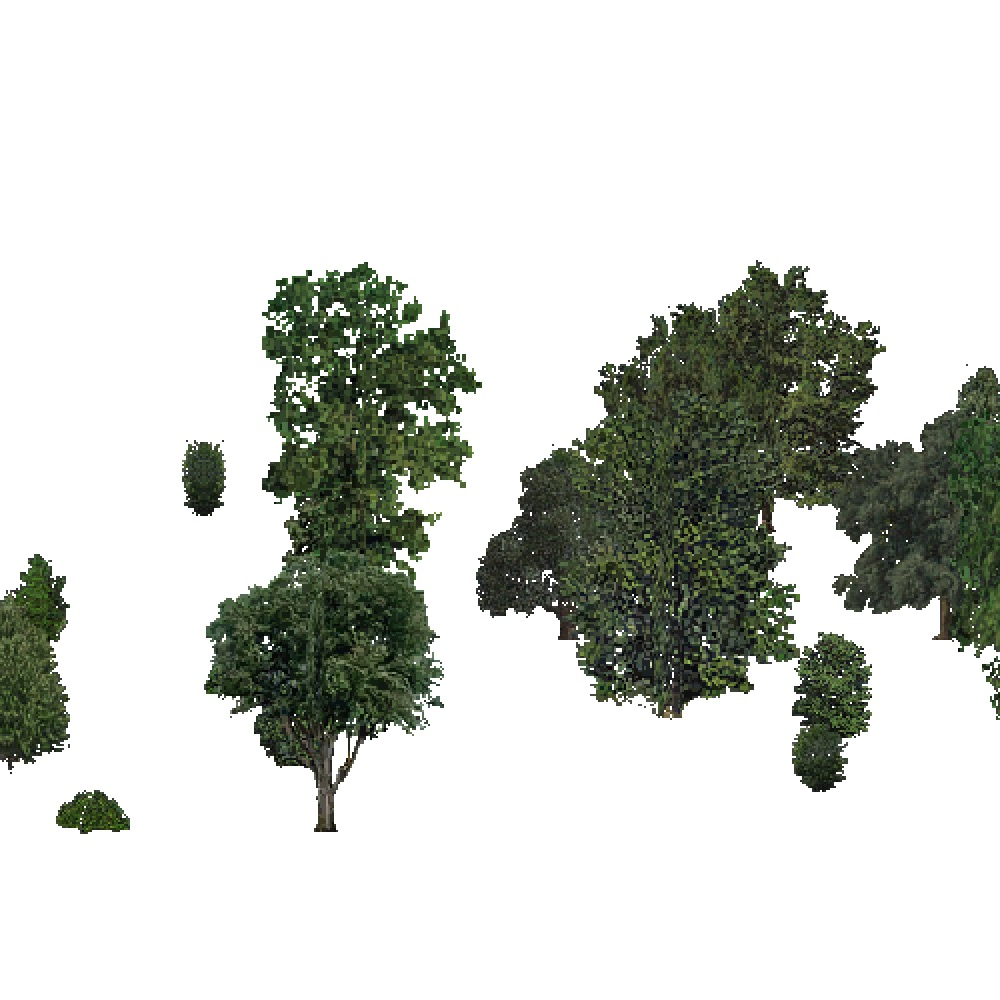 Screenshot of USA Forest, Southeastern, Deciduous Sparse