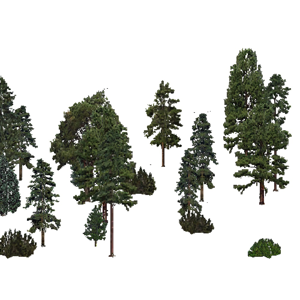 Screenshot of USA Forest, Southeastern, Evergreen Sparse