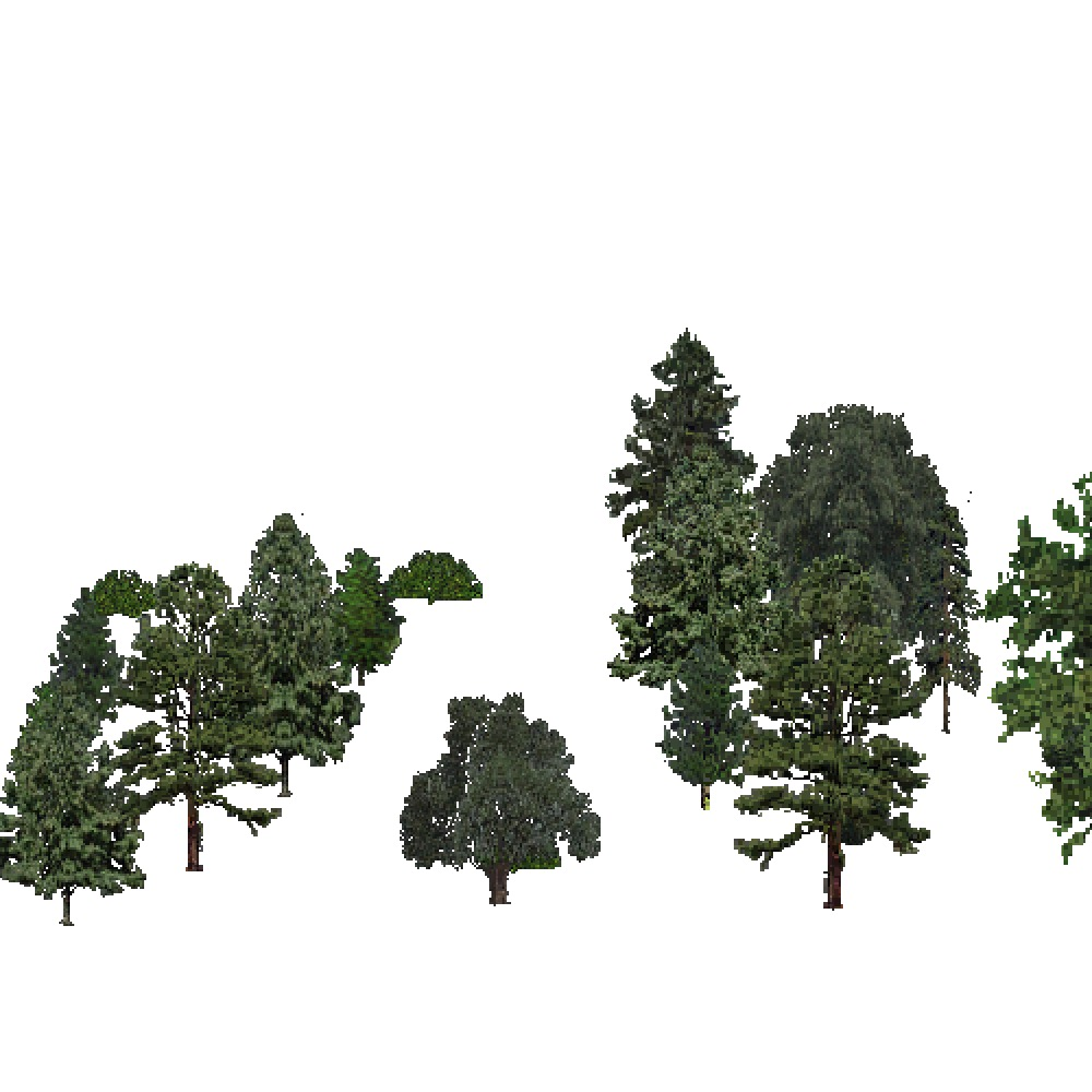 Screenshot of USA Forest, Southeastern, Mixed Sparse