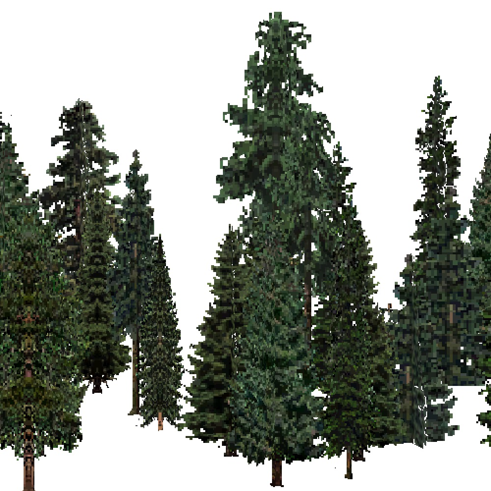 Screenshot of USA Forest, Southern Rocky Mountain, Evergreen Dense