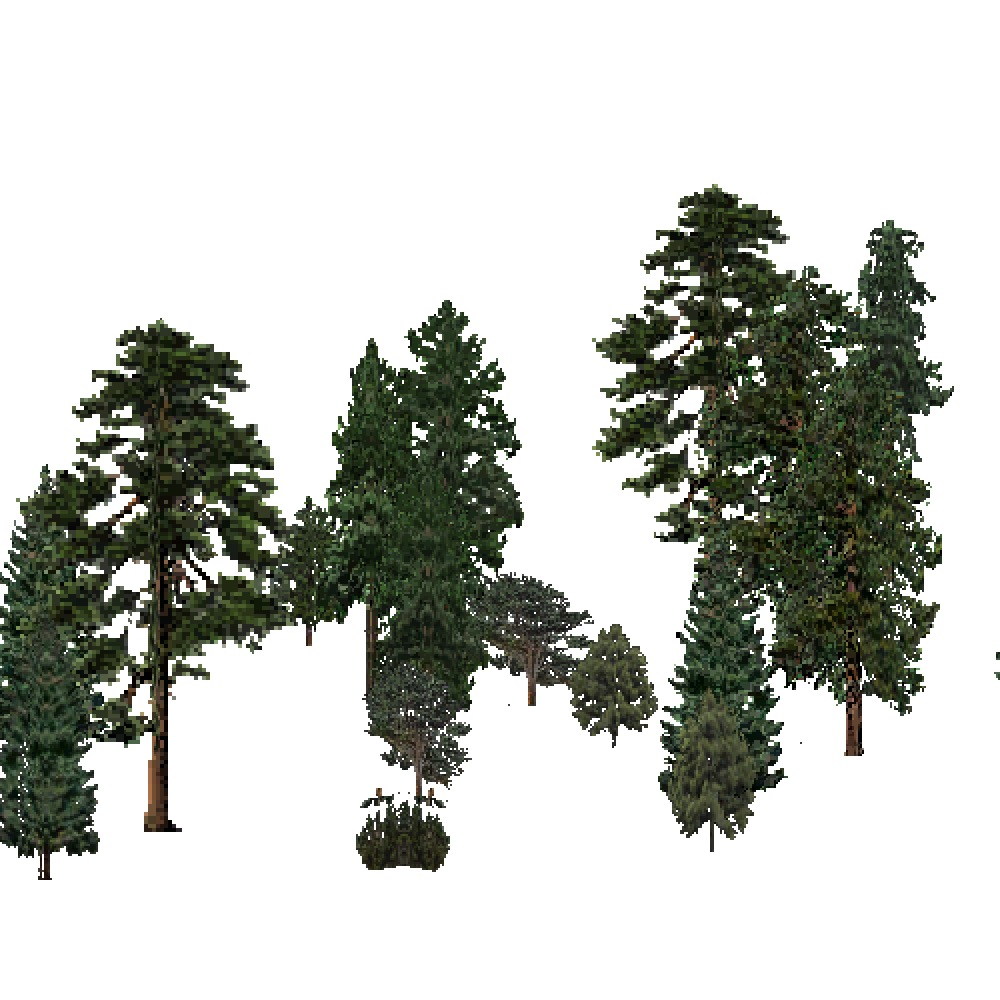 Screenshot of USA Forest, Southern Rocky Mountain, Evergreen Sparse