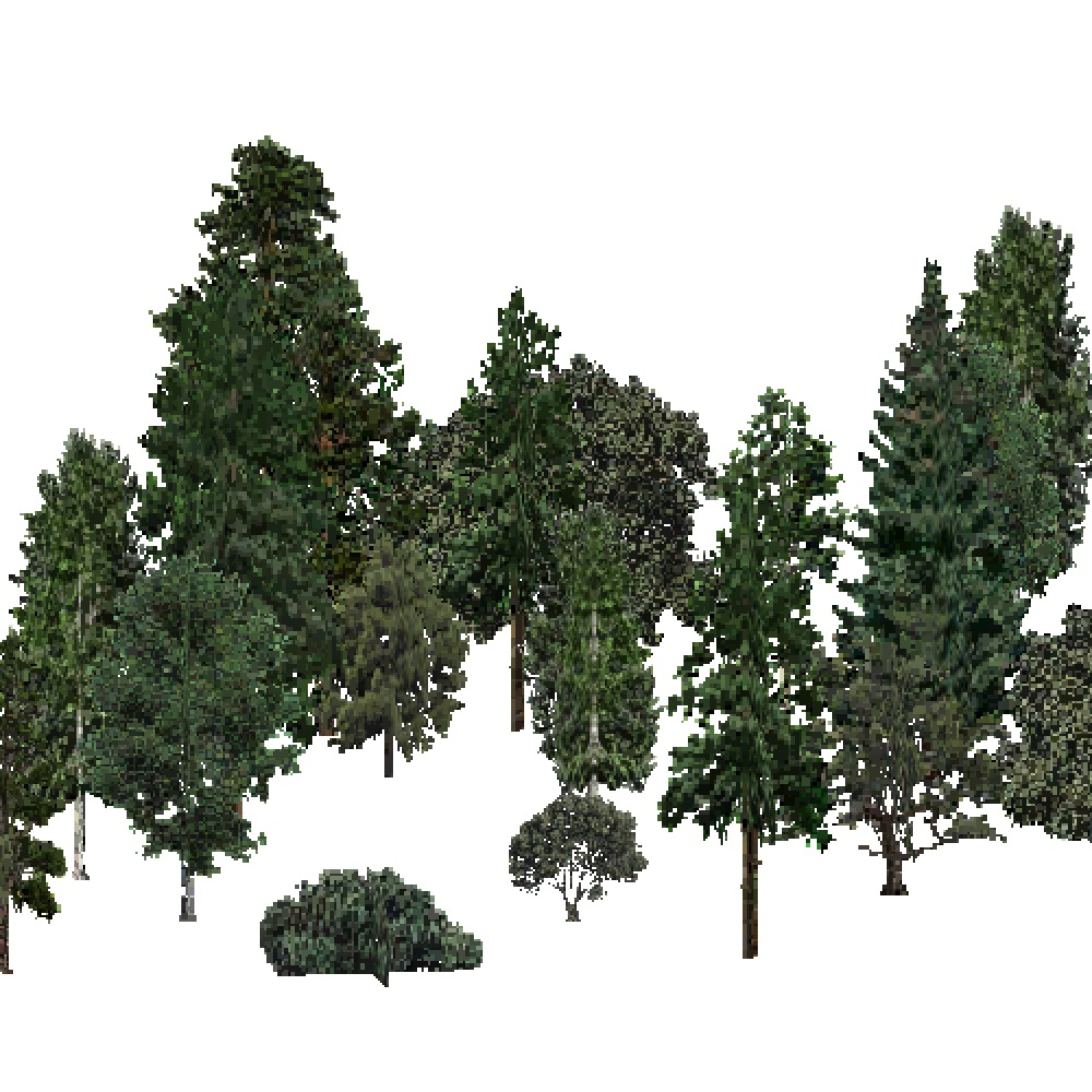 Screenshot of USA Forest, Southern Rocky Mountain, Mixed Dense