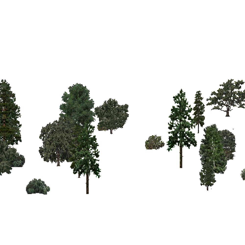 Screenshot of USA Forest, Southern Rocky Mountain, Mixed Sparse