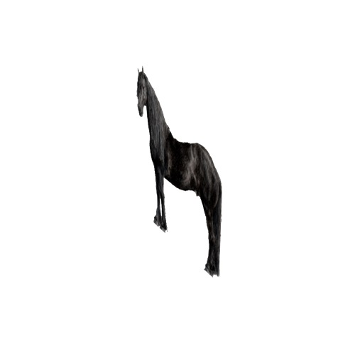Screenshot of Horse, black