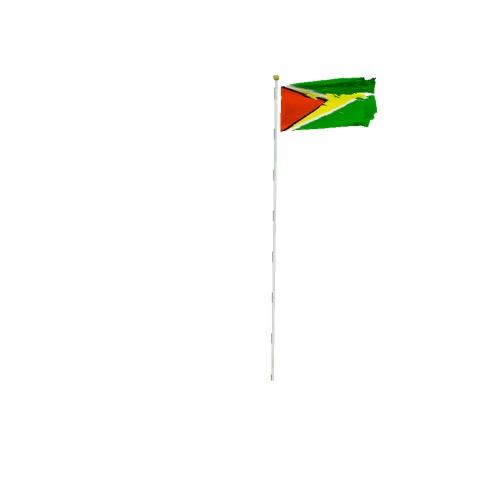 Screenshot of Flag, Guyana