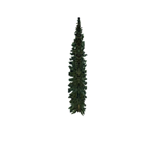 Screenshot of Tree, Abies (Fir), 15m