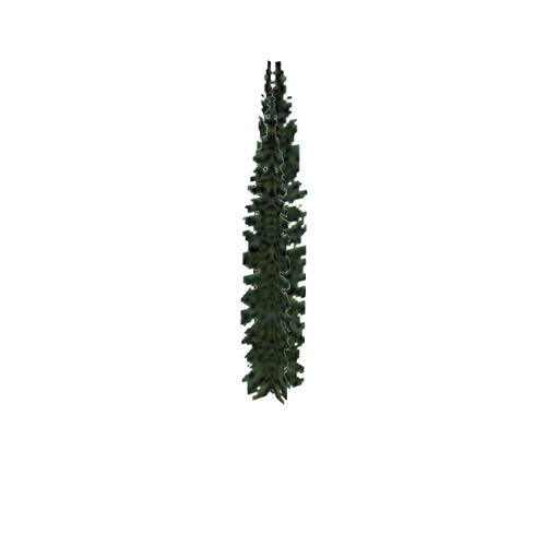 Screenshot of Tree, Abies (Fir), 7.5m
