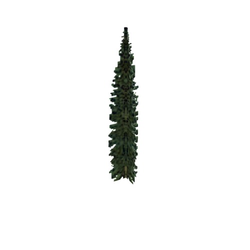 Screenshot of Tree, Abies (Fir), 8.5m