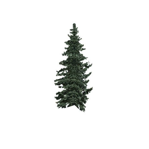 Screenshot of Tree, Abies (Fir), 18m