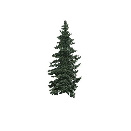 Screenshot of Tree, Abies (Fir), 23m