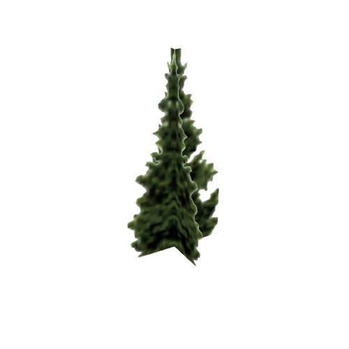 Screenshot of Tree, Abies (Fir), 9m