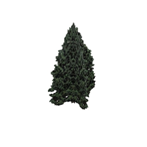 Screenshot of Tree, Cupressus (Cypress), 10m