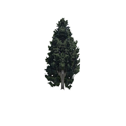 Screenshot of Tree, Cupressus (Cypress), 15m