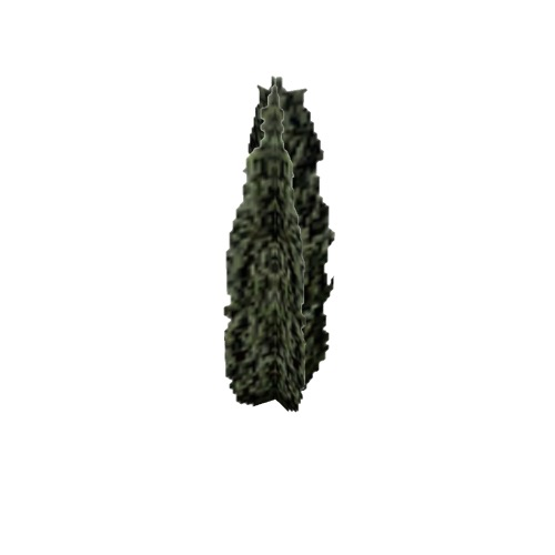 Screenshot of Tree, Juniperus (Juniper), 5.5m