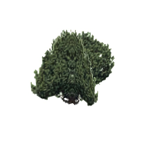 Screenshot of Tree, Juniperus, Californica (California Juniper), 7.5m