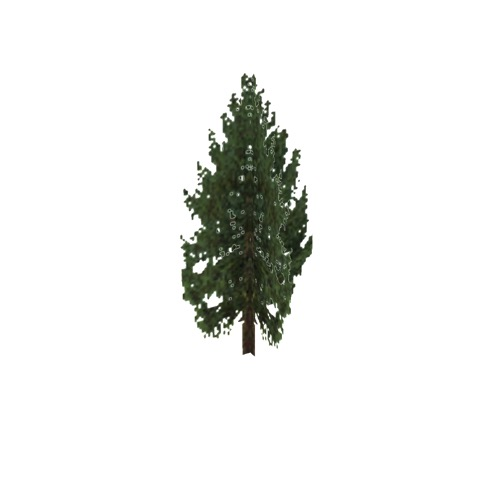 Screenshot of Tree, Larix (Larch), 19m