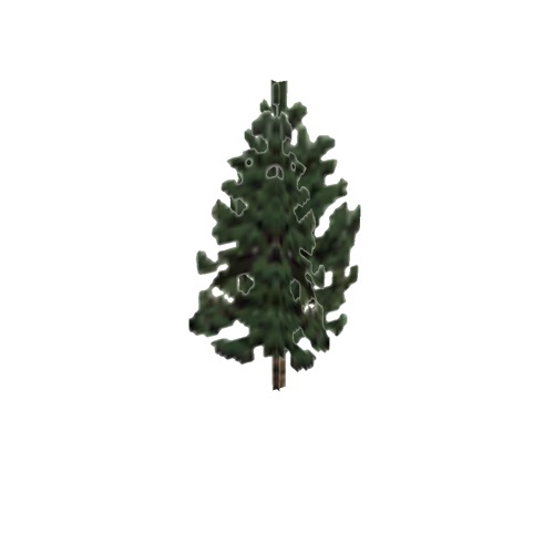 Screenshot of Tree, Pinus (Pine), 4m