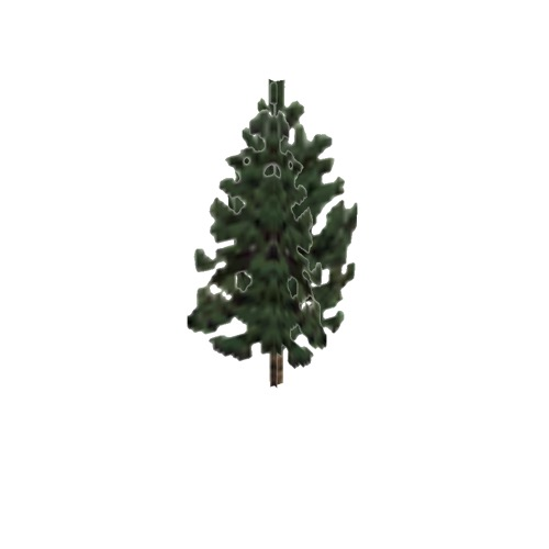 Screenshot of Tree, Pinus (Pine), 7.5m