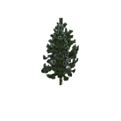 Screenshot of Tree, Pinus (Pine), 13m