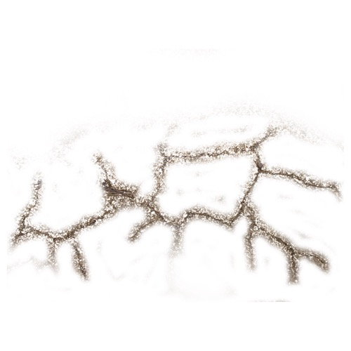 Screenshot of Cracks
